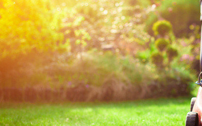 7 Tips For Late Summer Lawn Care