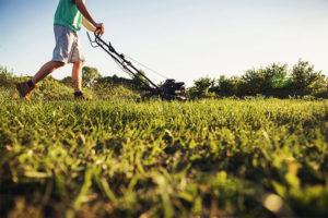 Lawn mower image