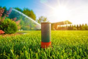 lawn sprinkler image