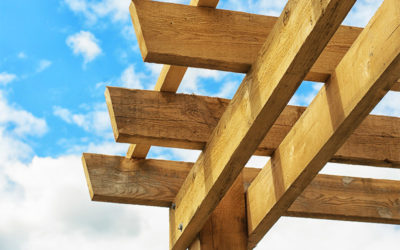Knowing Your Landscaping Architecture: A Pergola, an Arbor, or a Trellis?