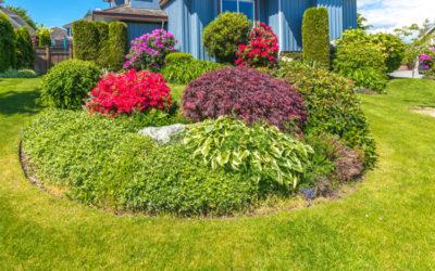Landscape Design for Smaller Yards